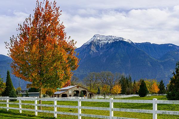 Ranch Estate